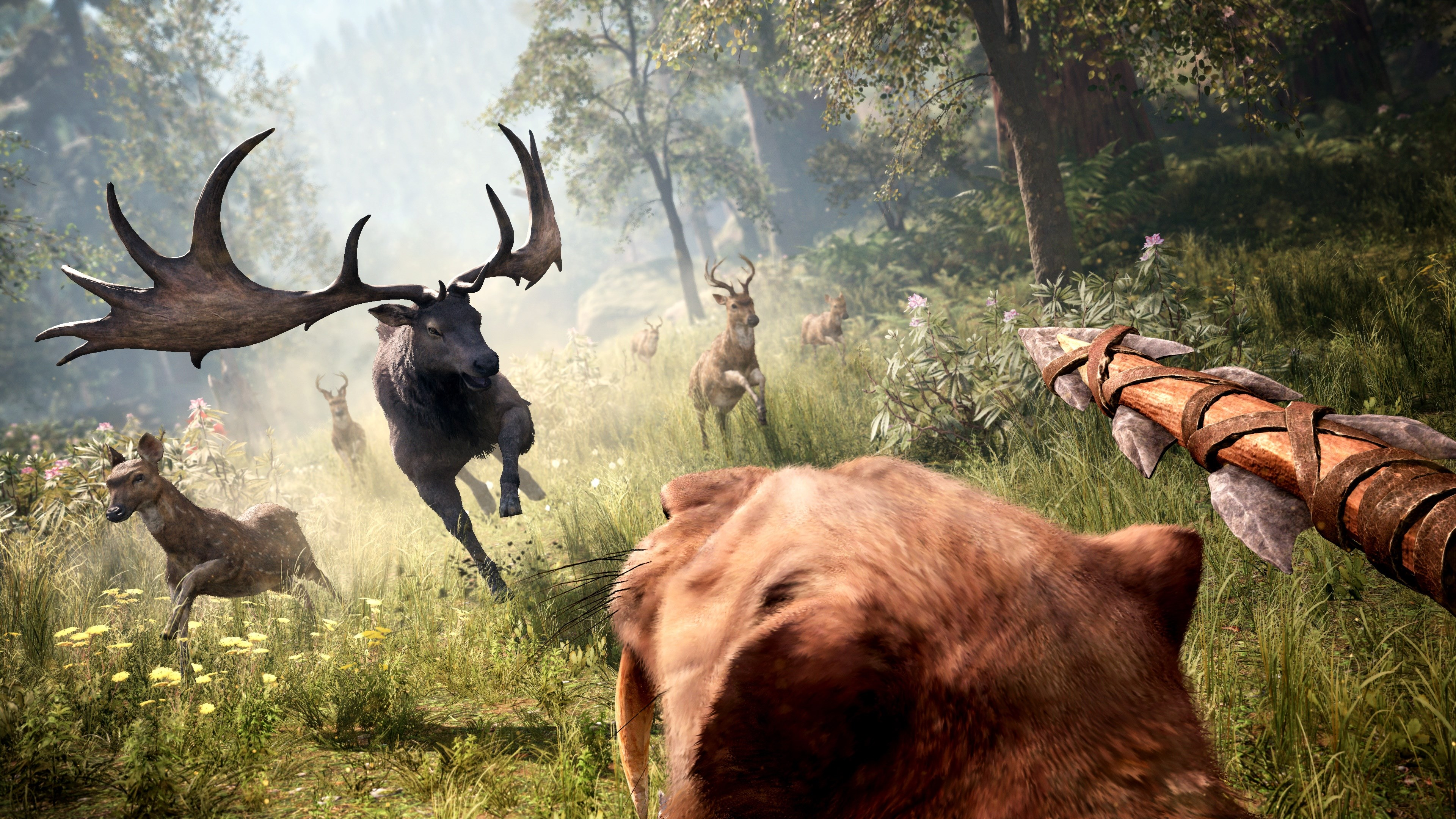 Far Cry Primal 4k Ultra Hd Wallpaper High Quality Walls