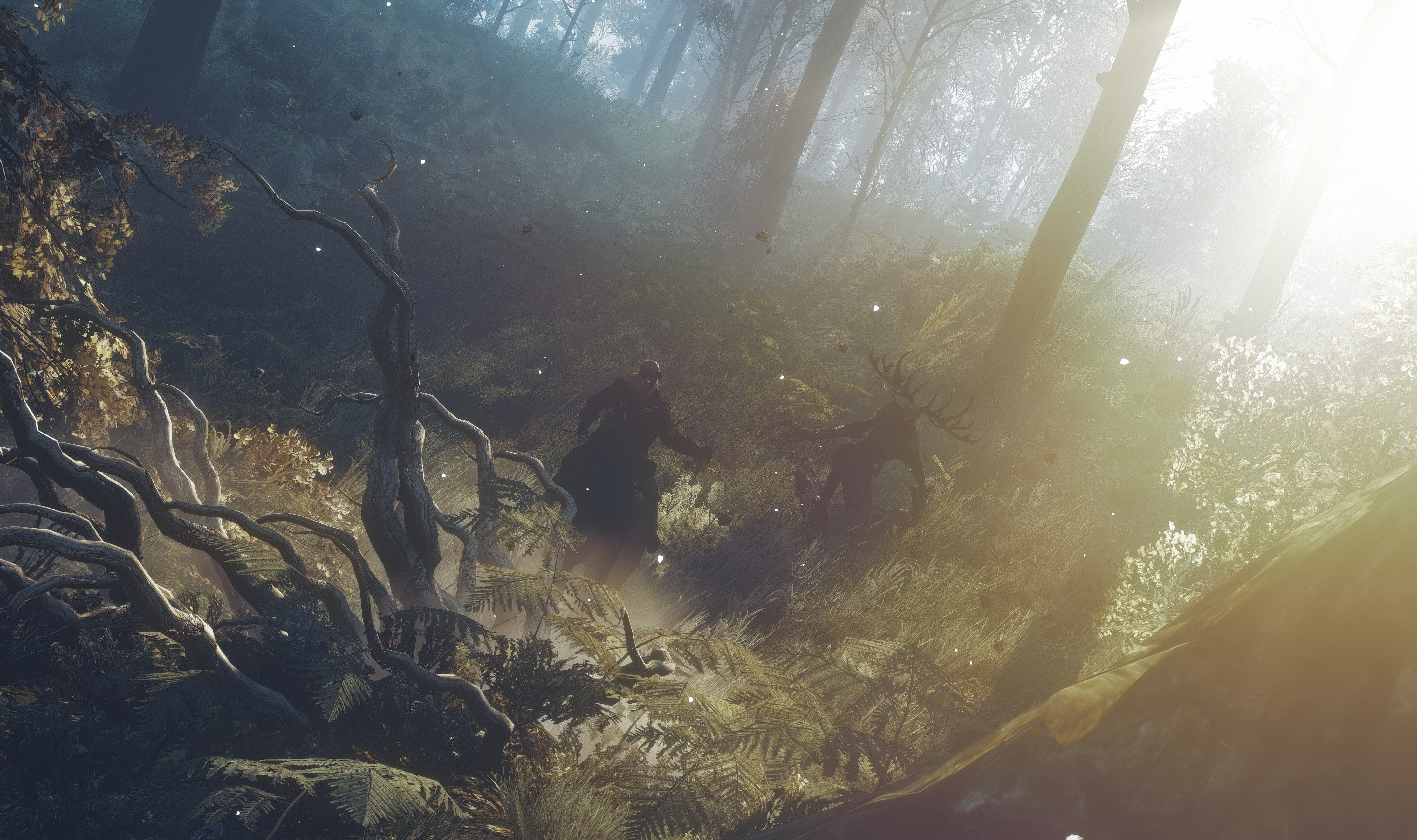 The Witcher 3 Wild Hunt 4k Ultra Hd Wallpaper High Quality