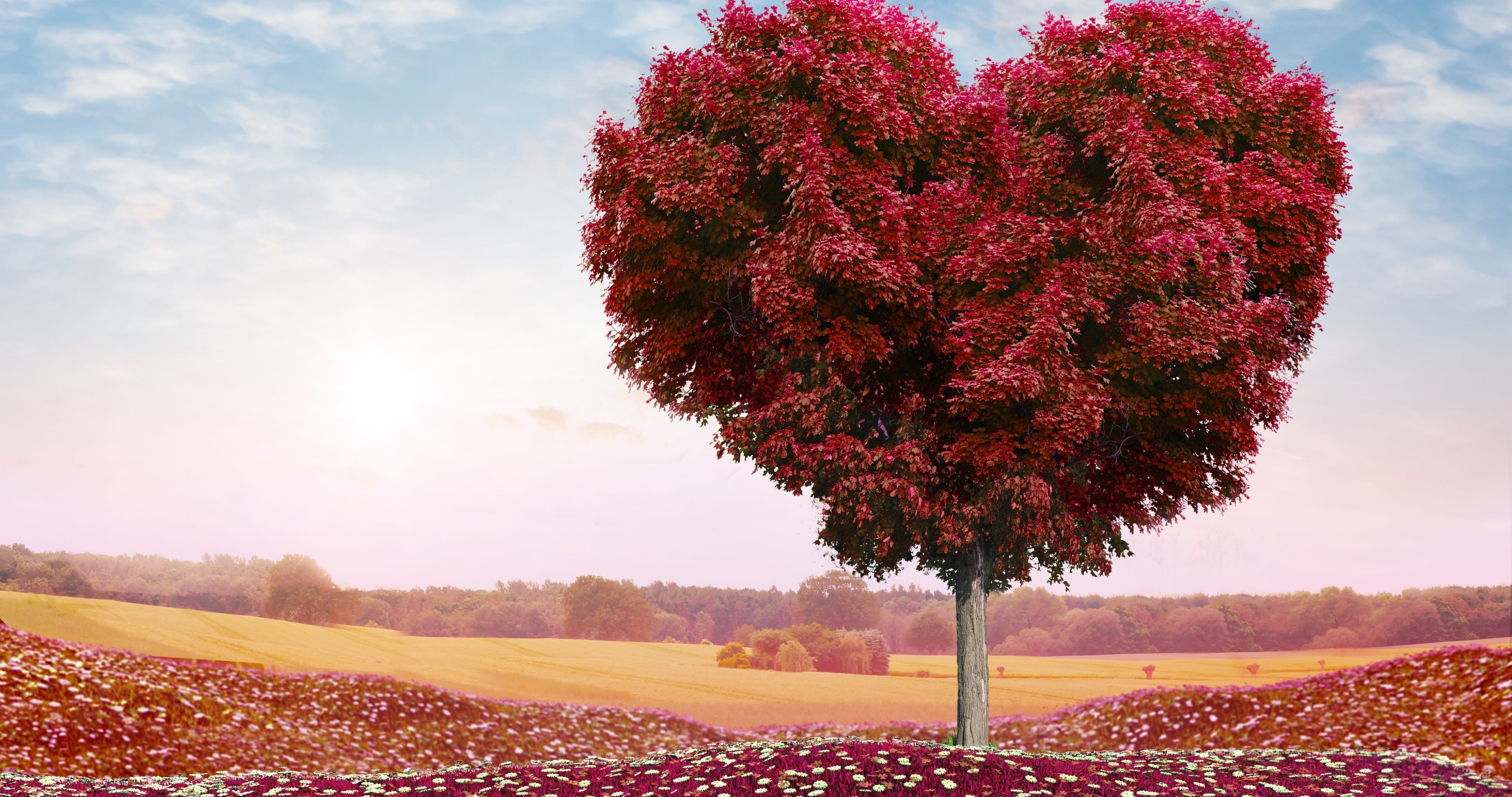 Valentines Day Hearts 4k Ultra Hd Wallpaper High Quality Walls
