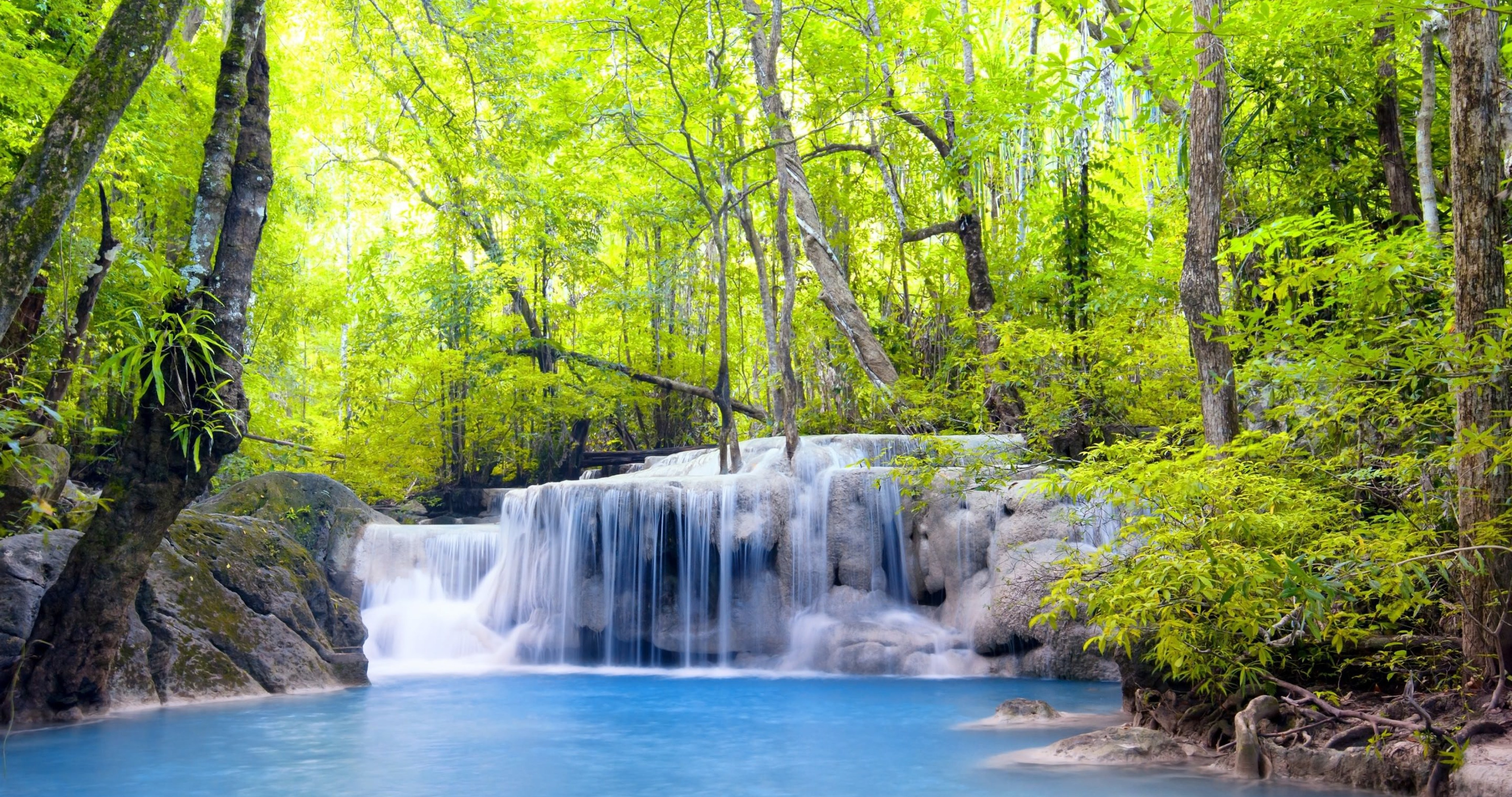 Cool Wallpaper High Quality Forest - 73203-waterfall-in-forest-wallpaper-68-4k-ultra-hd-wallpaper__nature  You Should Have_82766.jpg