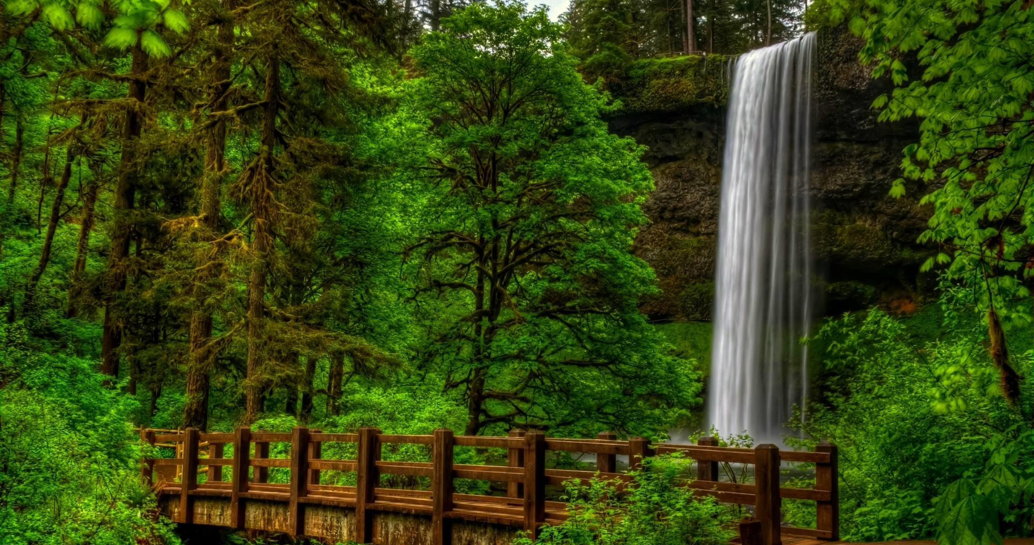 Forest 4k Quality Iphone Wallpaper: Waterfall In Forest Wallpaper 68 4k Ultra Hd Wallpaper