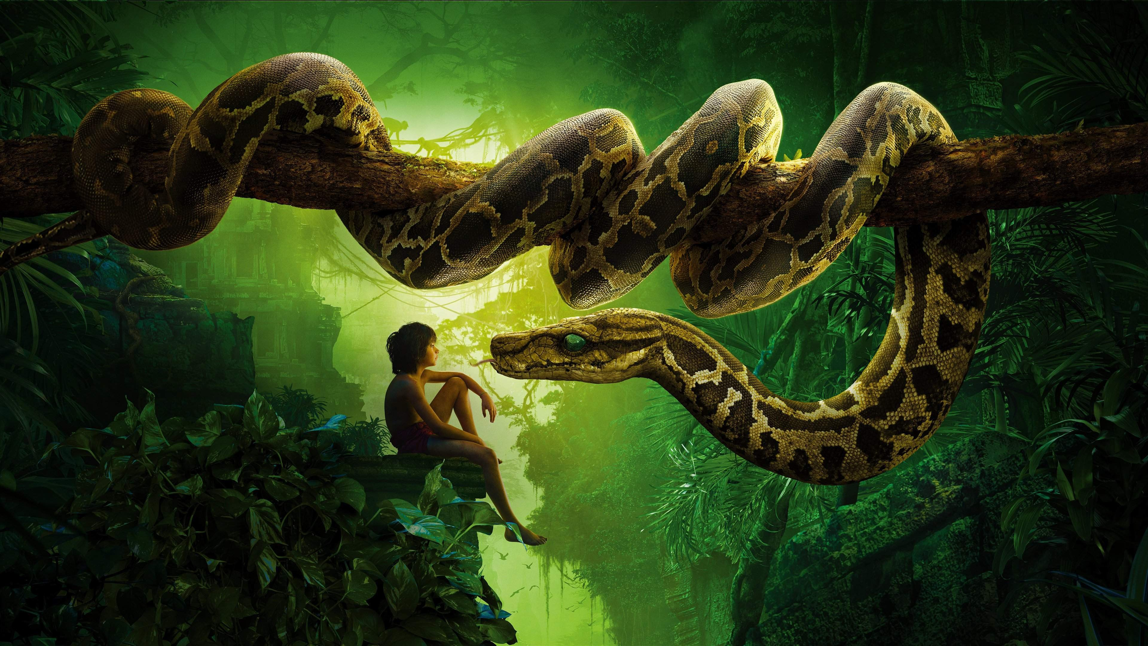 The Jungle Book Movie 4k Ultra Hd Wallpaper High Quality Walls